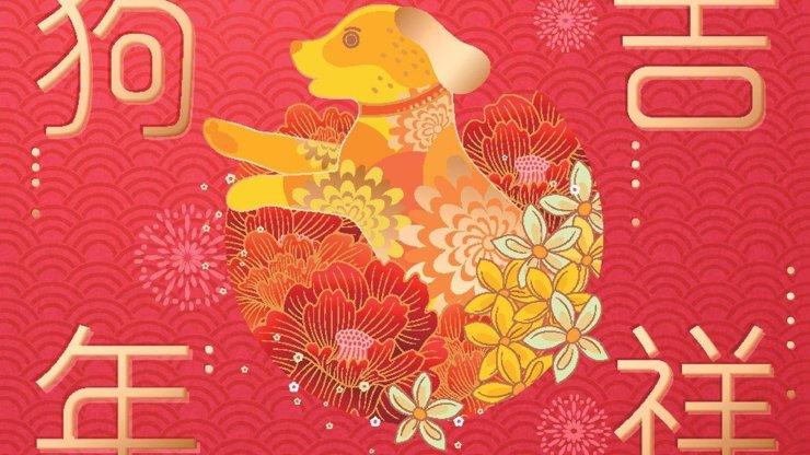 Rok zemského Psa je tu: Co nás letos podle čínského horoskopu nemine?
