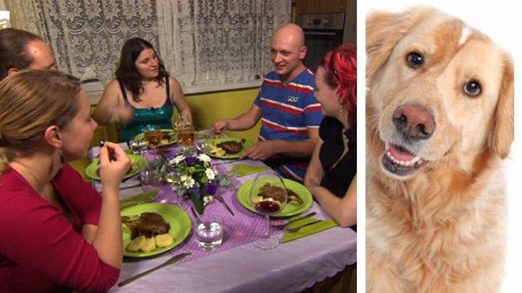 Pokrytci a pseudomilovníci zvířat, do střehu: Jeden ze soutěžících z Prostřena snědl psa!