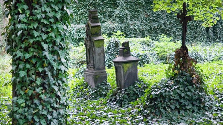 Nejděsivější místo v Evropě: Tajemný hřbitov bláznů v Bohnicích je jen pro odvážné