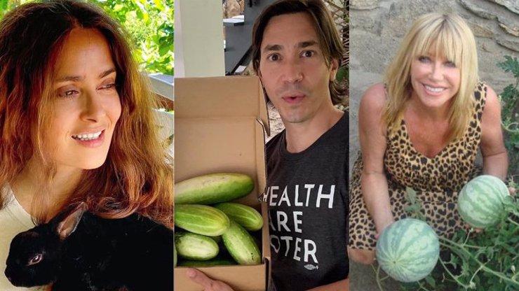 14 celebrit, které naprosto propadly venkovskému životu: Zahradničení a farmaření jsou jejich vášní