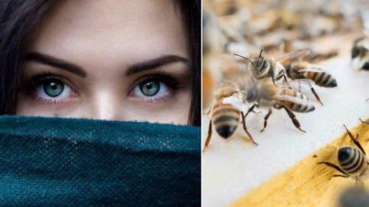 Ženě žily v oku ČTYŘI VČELY, živily se jejími slzami! DĚSIVÉ VIDEO