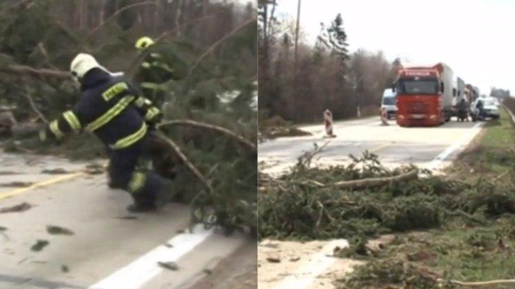 Silný vítr lámal stromy, padaly na projíždějící auta! D1 byla uzavřena na 14 HODIN!