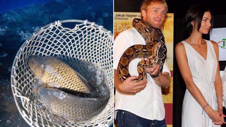 RYBA SMRDÍ OD HLAVY! Jakub Vágner je podezřelý z odporného činu! Bučková stojí při něm, ale rybáři jsou v šoku!