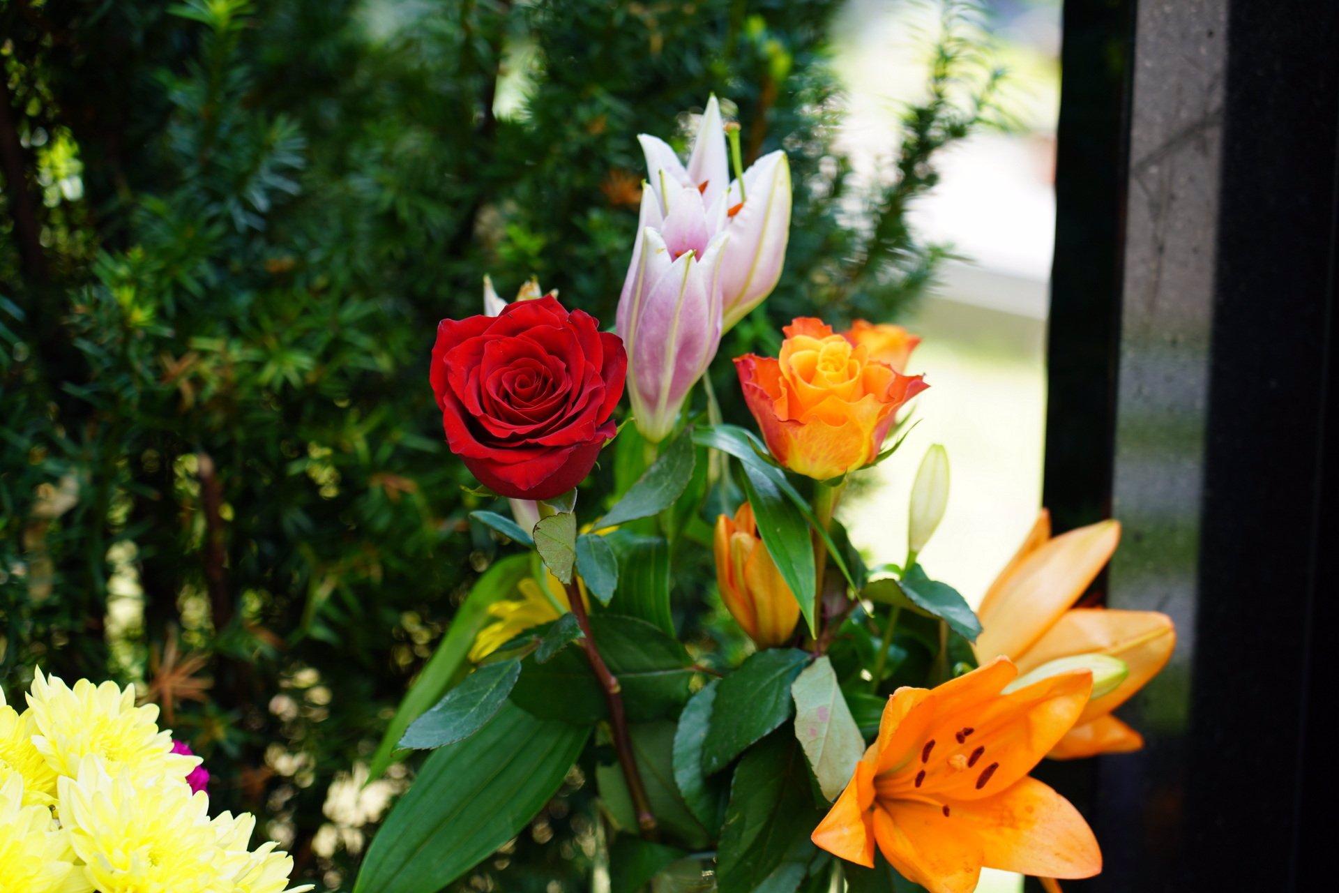 Mistrův hrob v záplavě květin: Karel Gott by zítra slavil narozeniny. Lidé nosí kupu dárků