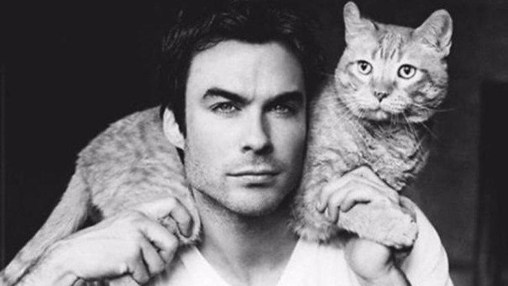 10 kočičích zajímavostí, díky kterým budete koukat na své vrnící kámoše úplně jinak