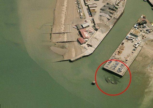 Sem byste tedy do vody spadnout nechtěli: U anglického mola číhá obrovský zmutovaný krab!