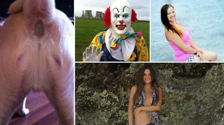 10 nejbizarnějších zpráv, které se v tomto roce objevily