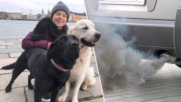 Káže vodu, pije víno: Greta má velké psy, klima znečišťují víc než dva teréňáky
