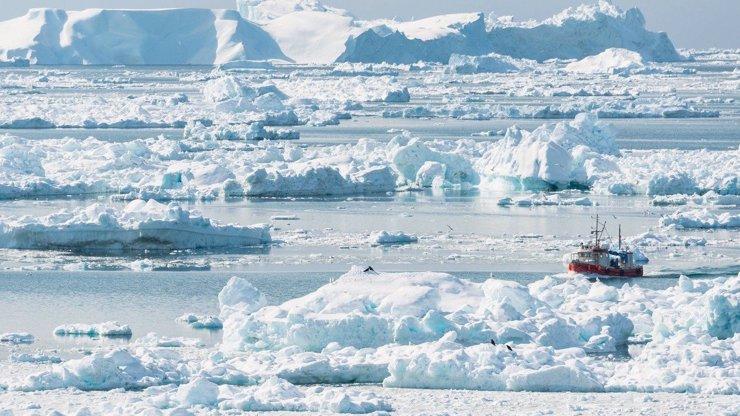 Historicky nejmrazivější zimy v Evropě: Ptáci umírající v letu i zamrzlé moře v Chorvatsku