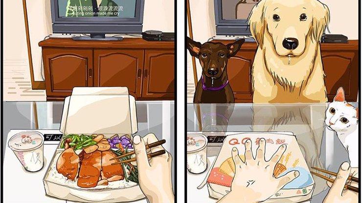 Jak vypadá život před a po pořízení pejska? Tyto vtipné kresby musíte vidět!