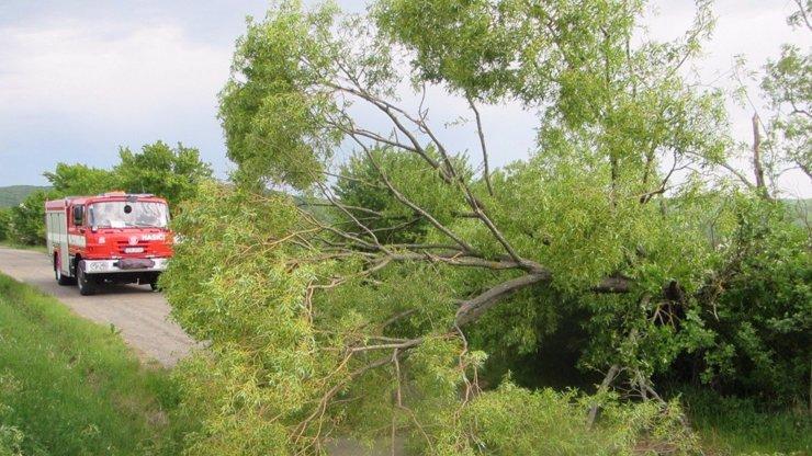 Na Evropu se žene nebezpečný vítr o síle hurikánu! Meteoroložka řekla, kdy dorazí do Česka