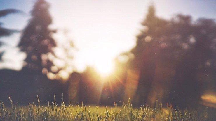Slunce vstoupí do Berana a začne astronomické jaro: Ryby to poblázní, Panny srší energii