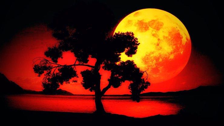 S čím přijde Měsíc ve znamení Býka: Náhradník v posteli i láska na celý život