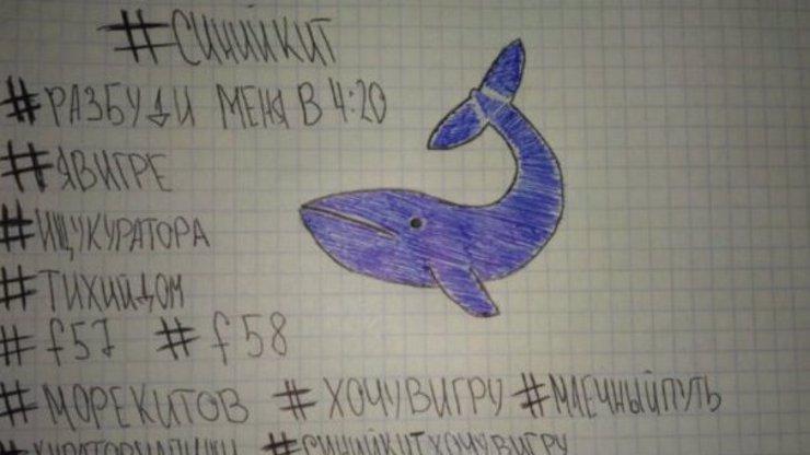 Je to horší, než se čekalo! Modrá velryba má na svědomí šílené množství dětských obětí!