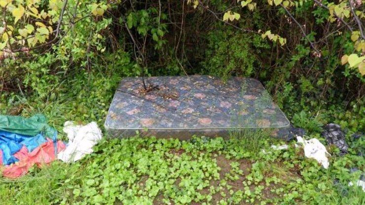 To je nápad: Co se dá udělat s nechutnou sexuální matrací uprostřed lesa?!