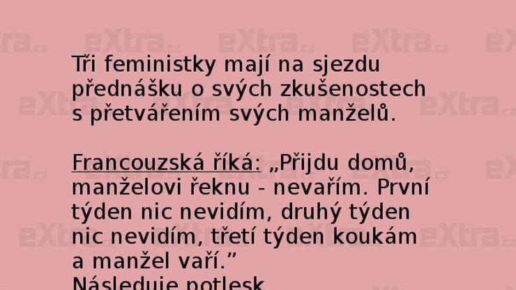 Češi musí prostě vynikat ve všem, ale v opačném slova smyslu!