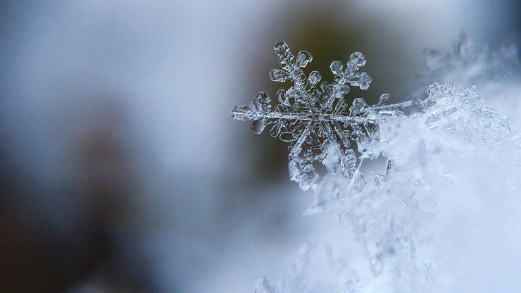 Jak vzniká sníh a sněhové vločky? Stačí mírná zima a trocha prachu