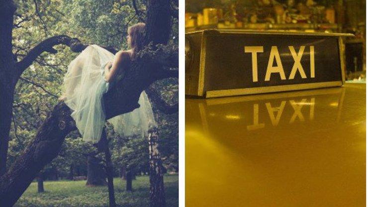 Taxikář si od mladé krásky vyslechl nejsmutnější věc v životě: Jaký příběh mu změnil život?