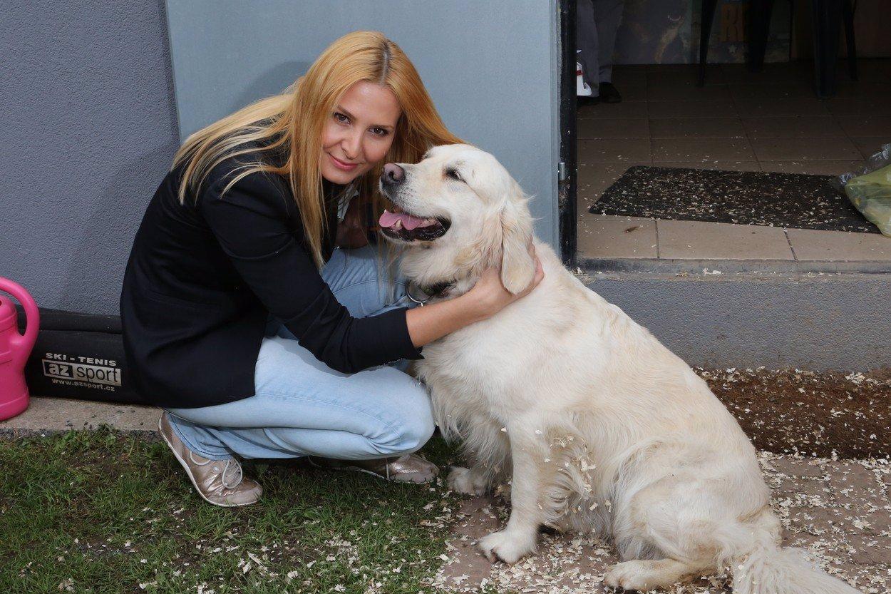 Stella odešla za páníčkem: Je možné fenku pohřbít spolu s Karlem Gottem? Zákon hovoří jasně