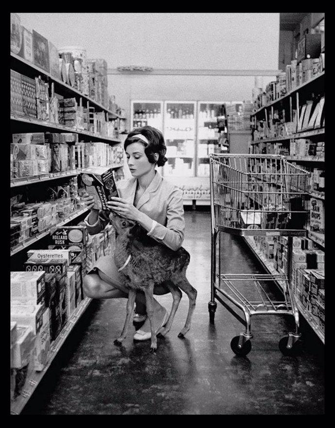 4.5. 10 tajemství se života úchvatné herečky Audrey Hepburn: Pracovala v nevěstinci, jedla psí suchary a měla fóbii z hladu