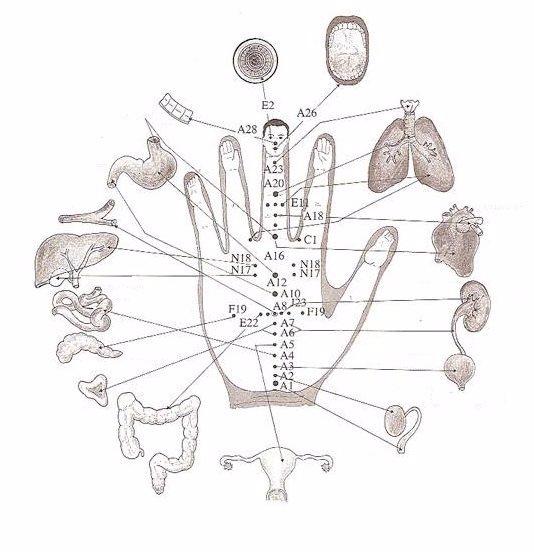 Tajemství starých Japonců vám pomůže od bolesti: Palec je spojen z úzkostí a malíček s nervozitou!