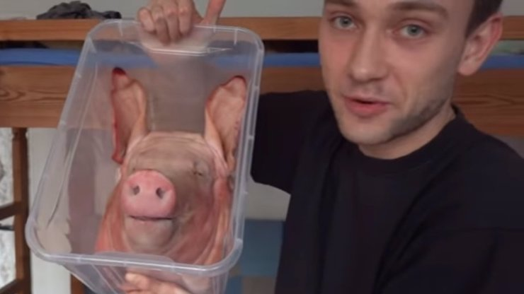 Youtuber Ondra Vlček naštval ochránce zvířat: Ve videu experimentuje s prasečí hlavou