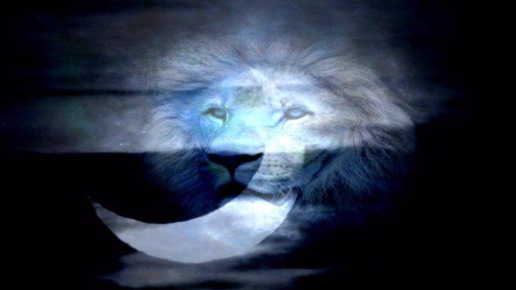 NOVOLUNÍ VE LVU volí vášeň: Jeho energie bude rozpálená a zničí vše okolo