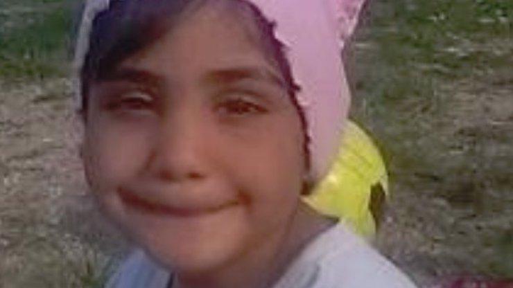 Nové fotky zmizelé Valinky (6) ze Žižkova: Rok ji nikdo neviděl, zatím ji nenašli