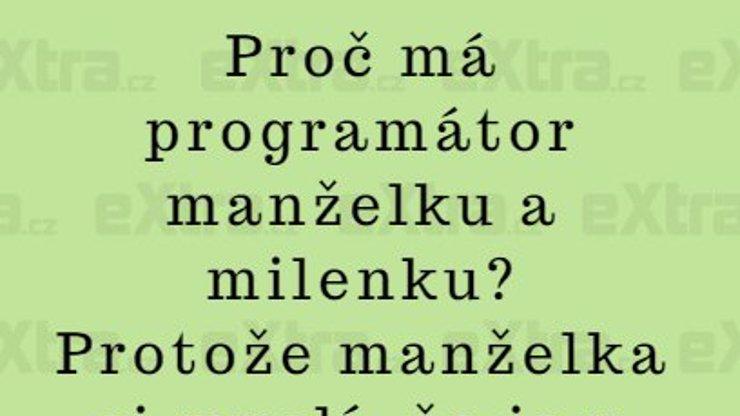 Proč myslíte, že má programátor manželku a milenku? Odpověď vás rozseká!
