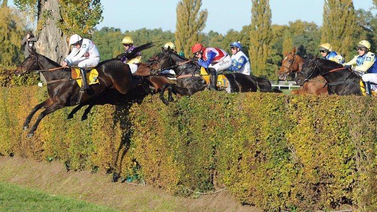 TRAGÉDIE: Smrt na dostihovém závodišti v Pardubicích. Jezdkyni tam zavalil kůň!