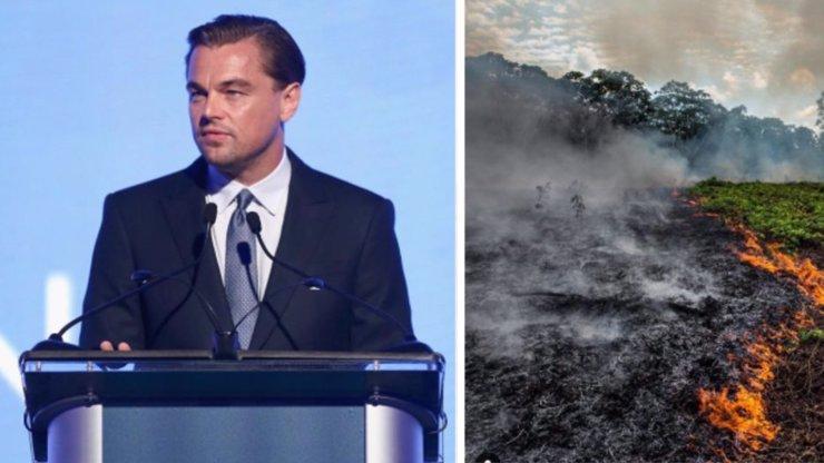 Celebrity vyzývají k boji za záchranu Amazonie: Leo DiCaprio přispěl 5 miliony dolarů