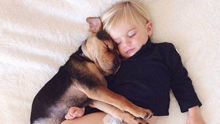 Ve dvou se to lépe spí: 8 roztomilých fotek batolete a štěněte