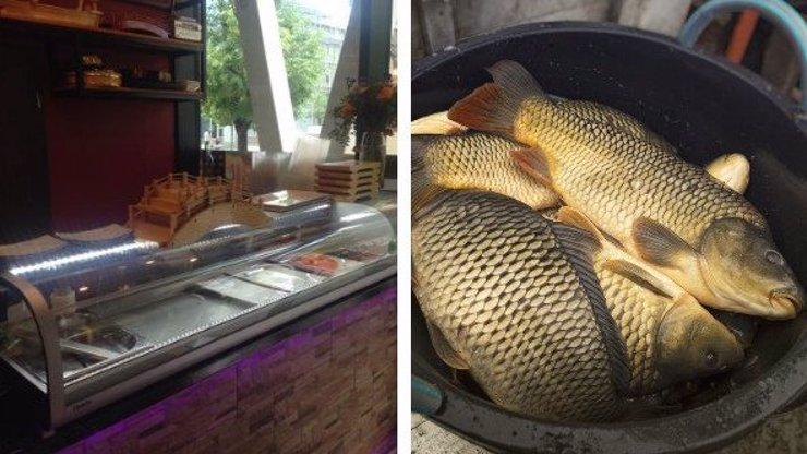 Skandál v sushi restauraci: Kuchař šel večeři pro hosty ulovit do Vltavy! Podniku hrozí milionová pokuta