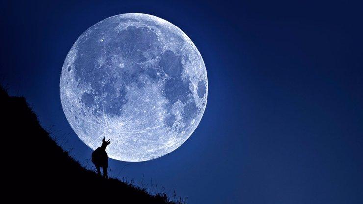 Kdy se vdát? A kdy se naopak rozvádět? Poradí vám Měsíc!