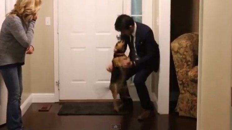 Důkaz místo slibů, pes může milovat i mormona. Ukňučené video to jasně dokládá!