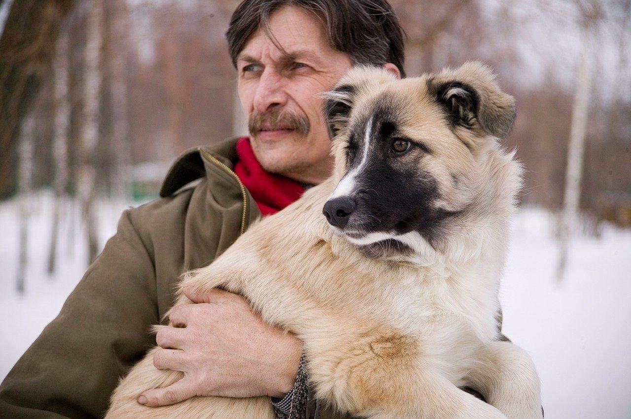 Nákaza mazlíčků: Přenese na vás pes nebo kočka koronavirus a můžou ho chytit?