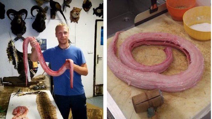 Nejbláznivější český kuchař vaří brouky a griluje hady! Odvážili byste se ochutnat?