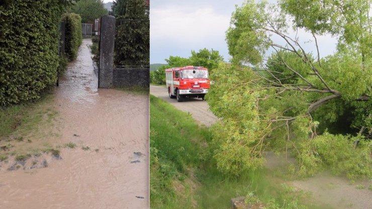 Popadané stromy a zatopené cesty: Silné bouřky udeřily na Česko, hasiči mají pohotovost