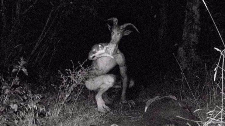 Existuje tajemný Kozí muž? Lidé šílí z fotografií odporného monstra!