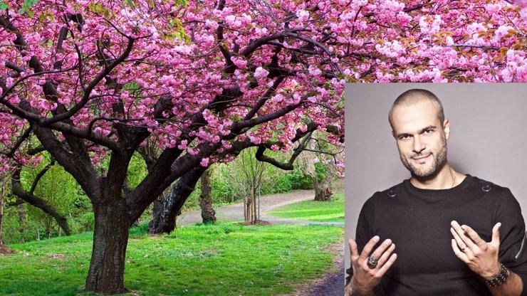 Březen - po sobě lezem! Tohle je 8 důvodů, jak poznáte, že na vás už zase přišlo jaro!