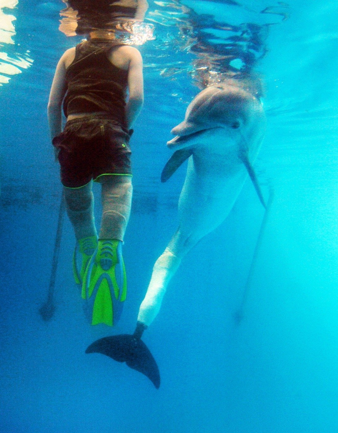 Dojemné: Beznohý chlapec si zaplaval se slavným delfínem