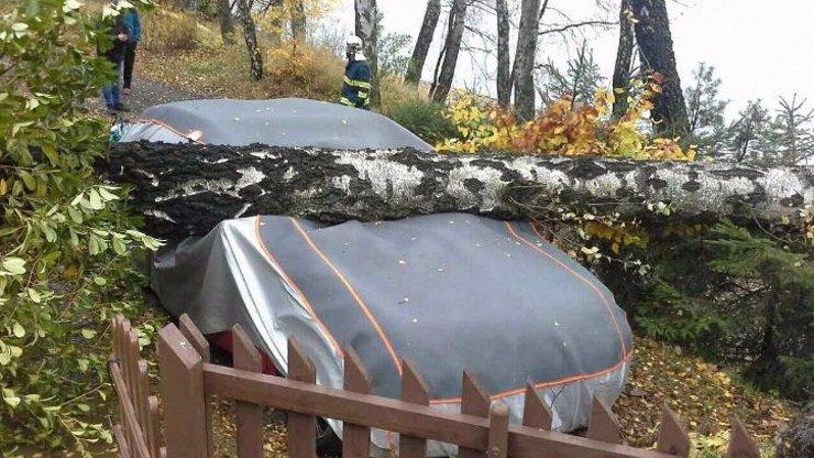 Výstraha meteorologů: Do Česka se žene silný vichr, bude lámat stromy a trhat střechy