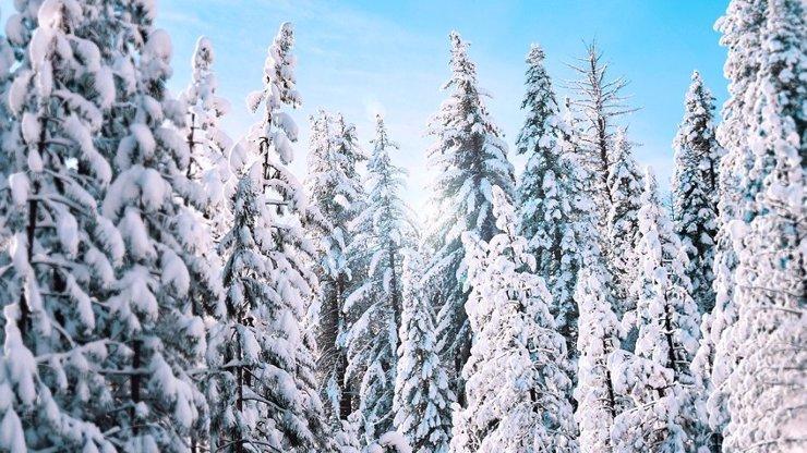 Mapy nového sněhu: Na horách už napadalo, platí výstraha před další nadílkou