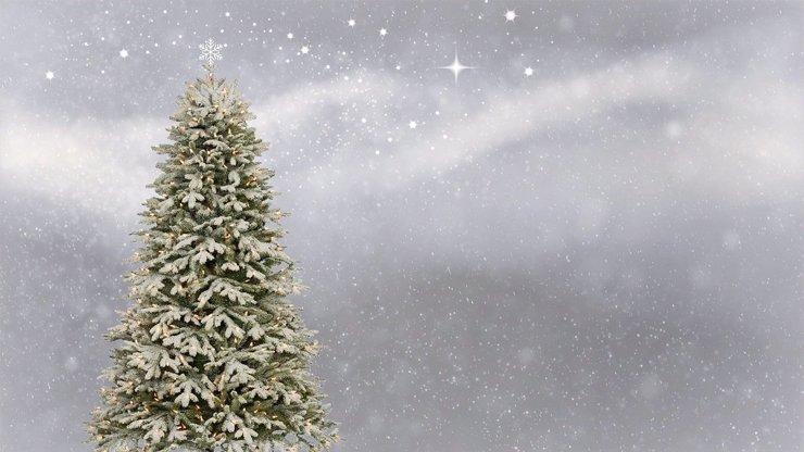 Přehled sněhové nadílky: Meteorologové řekli, kde se šťastlivci dočkají bílých Vánoc
