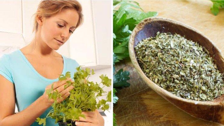 Petržel: Zázračná bylinka, po které zhubnete i 5 kilo za pár dní