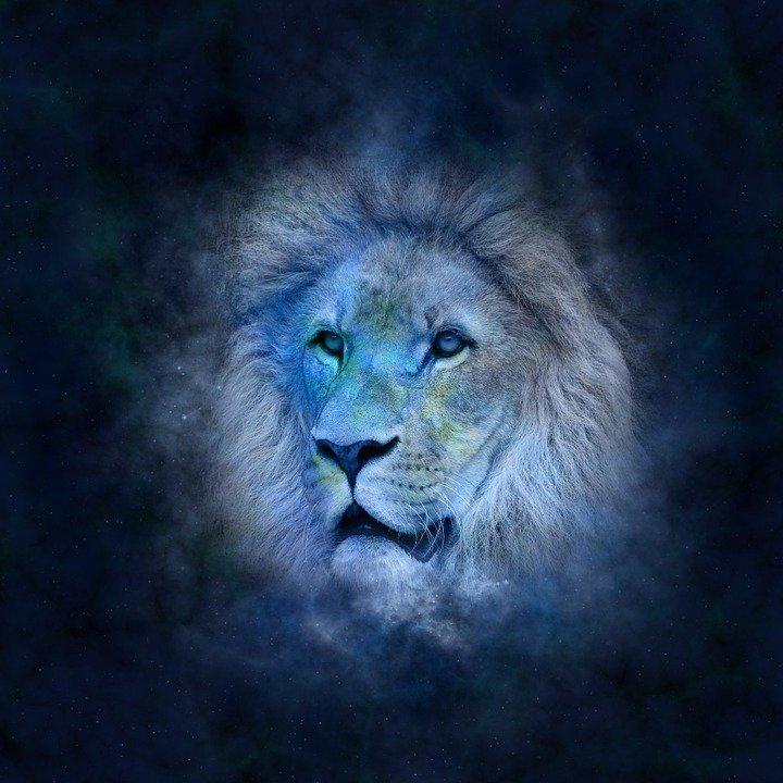 SPECIÁLNÍ VÁNOČNÍ HOROSKOP: Co přinese Štědrý den? Lev bude nedočkavý, Vodnář bude hrdinou Vánoc