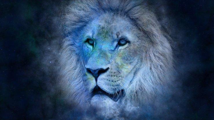 Horoskop na únor pro majestátní Lvy: Nekalé myšlenky a vztahy jako na houpačce