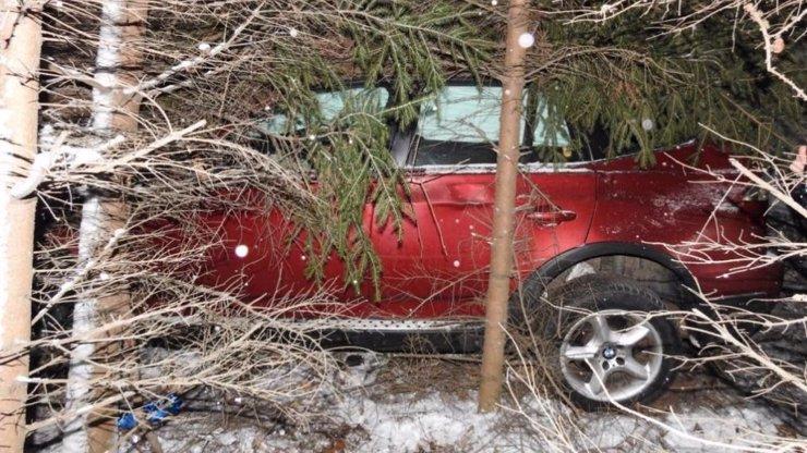 Opil se na Dádu: Alkoholový děda měl v sobě 2 promile a BMW zapíchl v lese!