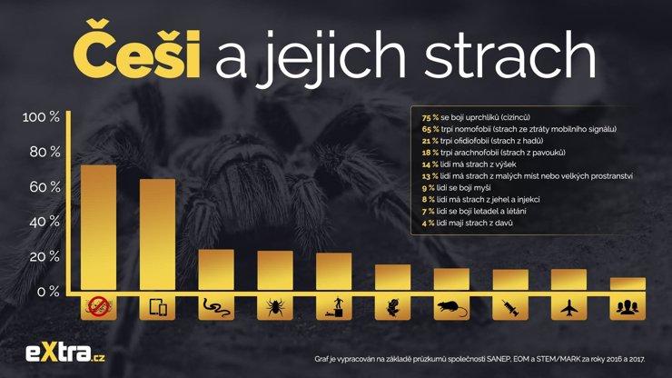 Češi a jejich strach: Cizinců se bojíme víc než výšek a pavouků