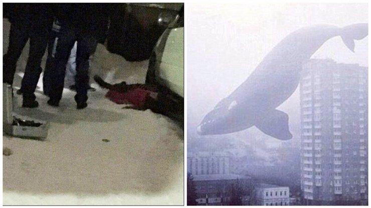Vyžádala si smrtící hra Modrá velryba další oběť? Mladík (†18) v Havířově spadl z 8. patra!